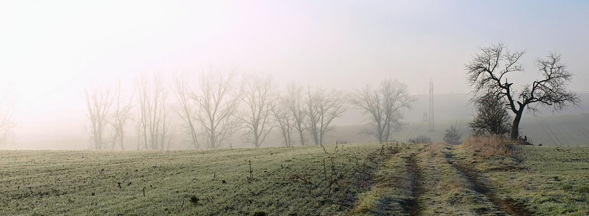 Obec Kravsko - okolí Kravsko