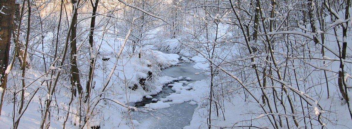 Obec Kravsko - potok v Kravsku